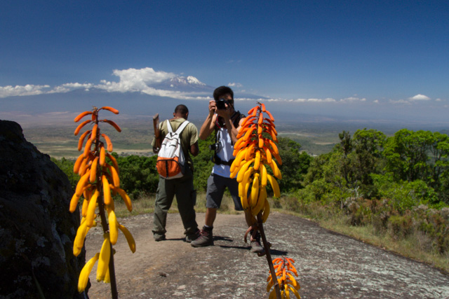 Flowers, Shu and Mt. Kilimanjaro